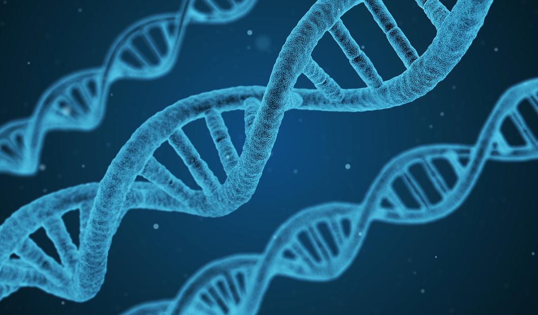 I MODELLI STATISTICI DELLA FISICA PER STUDIARE LE MUTAZIONI GENETICHE DEL CANCRO